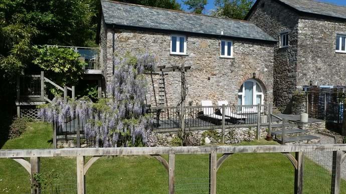 Beautiful Wisteria in Nutcombe Cottage Garden