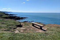 Hartland Quay to Hartland Point: rewarded with this bench!