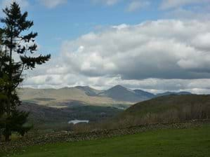 View of the Old Man of Coniston from above the cottage
