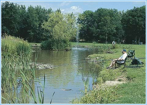 Goosewood Holiday Park York Fishing Lake