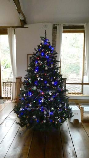 Beautiful 7 Foot Christmas Tree in Nutcombe Barn