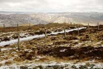 Cambrian Mountains in the snow