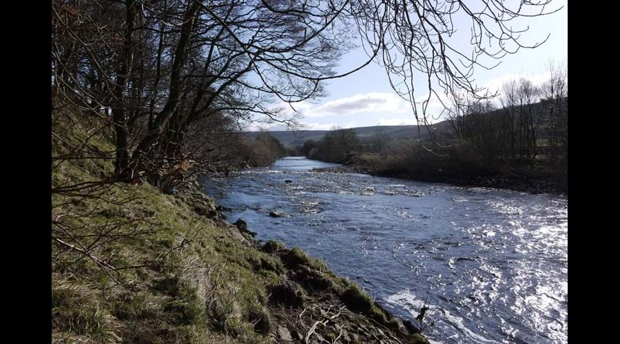 The River Swale flowing  through Grinton
