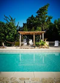 Idyllic pool surrounded by vines and trees