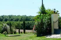 Front Garden Iron Gates; Open Views.