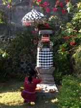 Huis tempeltje waar iedere ochtend kleine offers geplaatst worden