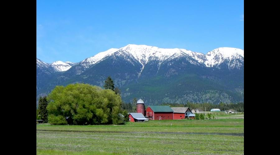 Local Barns in Flathead Valley
