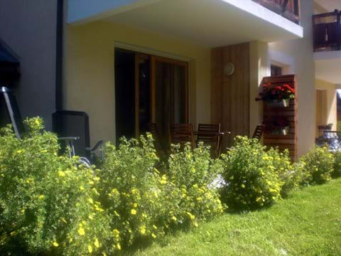 Our garden and terrace