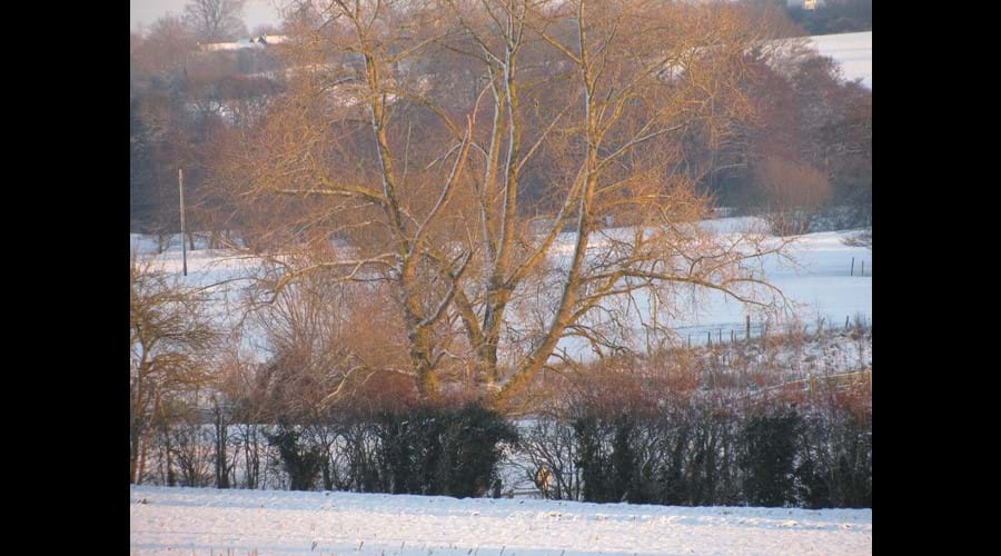 footpaths and walks across the valley