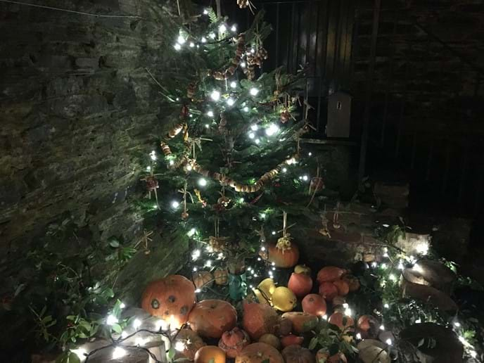 Beautiful Heligan christmas tree