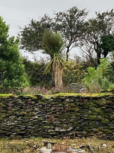 Upper level back garden