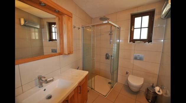 Modern bathroom with power shower