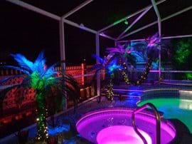 Spa with lighted palm tree backdrop