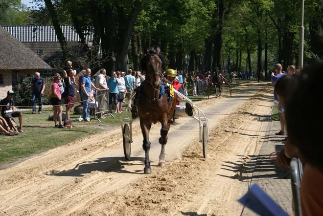 Paardenrace Diever