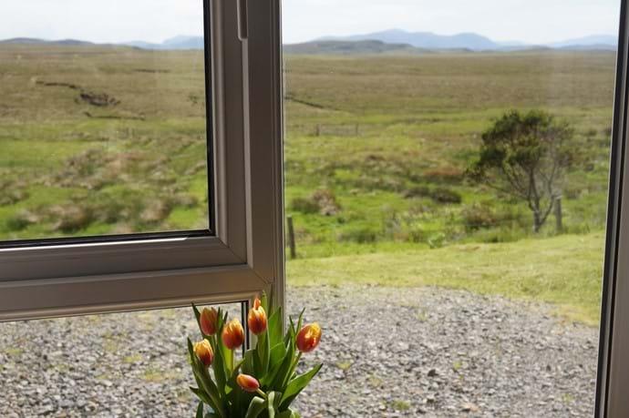 Lounge window views