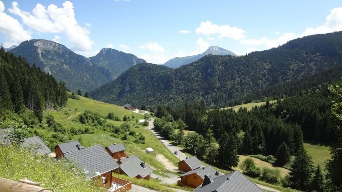 Drouzin Le Mont