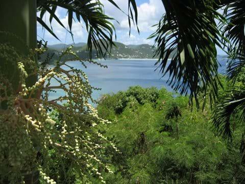 View to Long Bay Beach