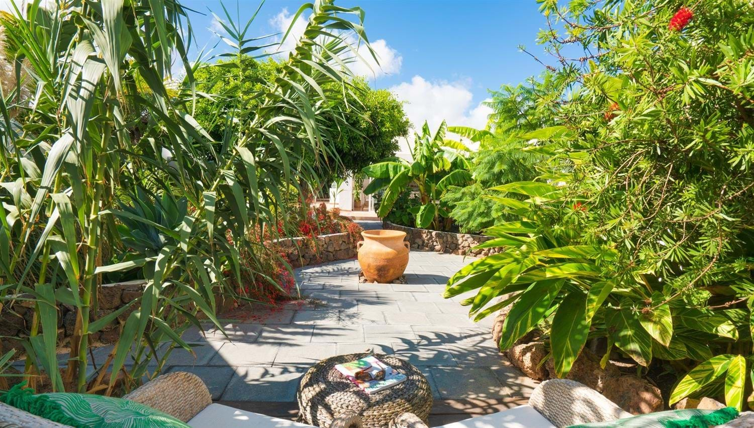 Views of palms and bananas in The Secret Garden Villa at Finca Botanico, Lanzarote