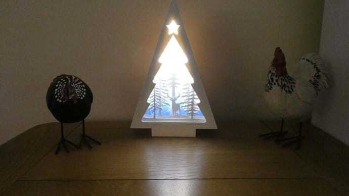Christmas lights in Nutcombe Cottage