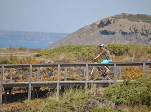 MTB mountain bikes on Rota Vicentina