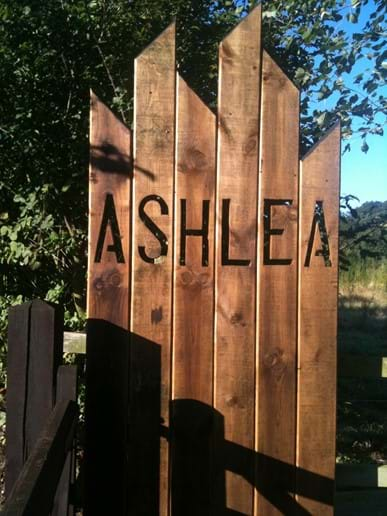 Welcome to Ashlea Studio