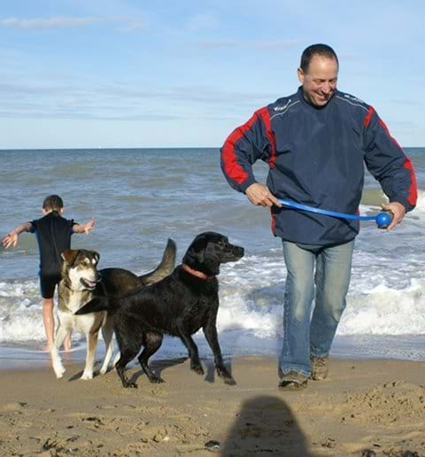 Many dogs love a day at the beach and all Normandy beaches allow dogs out of peak summer season.