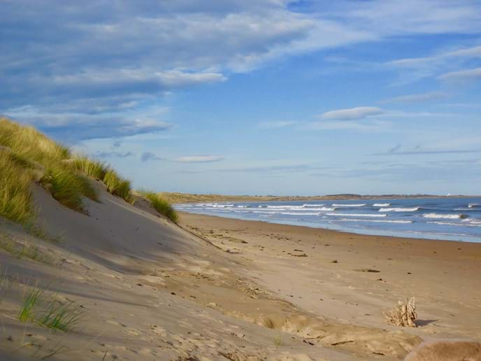 Seven miles of sand and dunes, often with hardly a soul in sight !