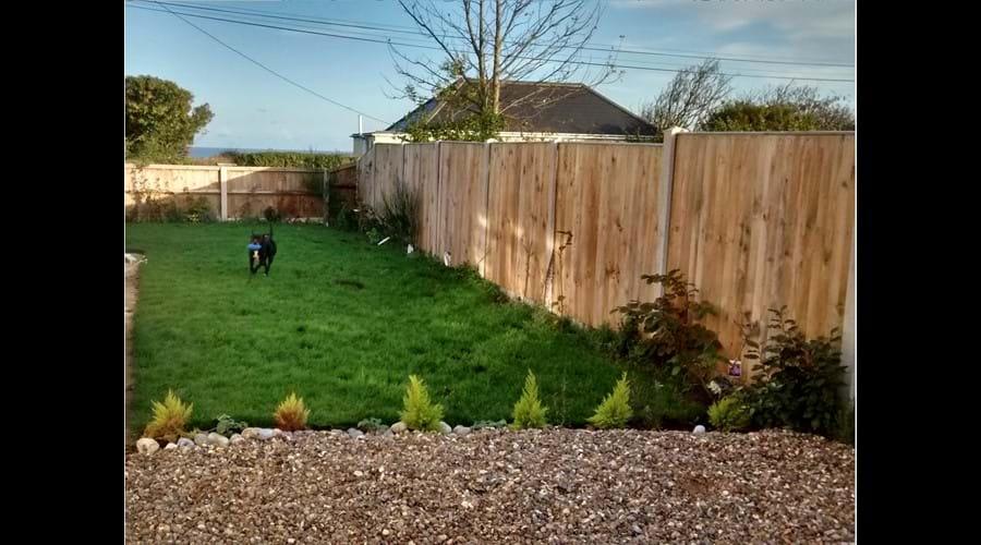 Garden - Driveway