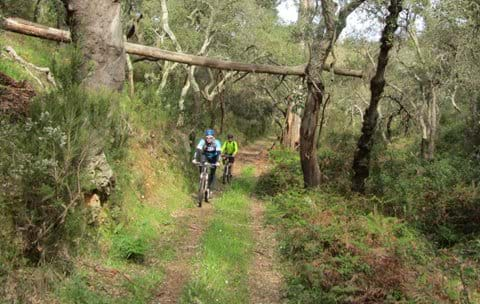 Mountain Biking on unspoilt MTB routes