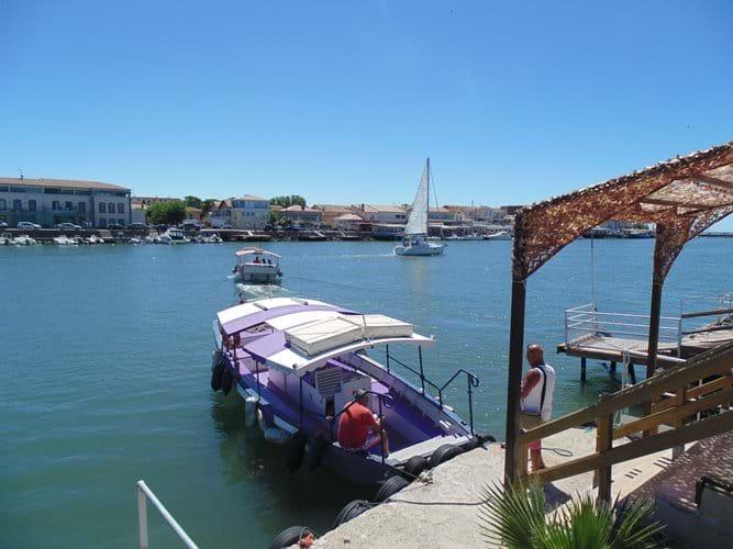 Ferry across the Herault