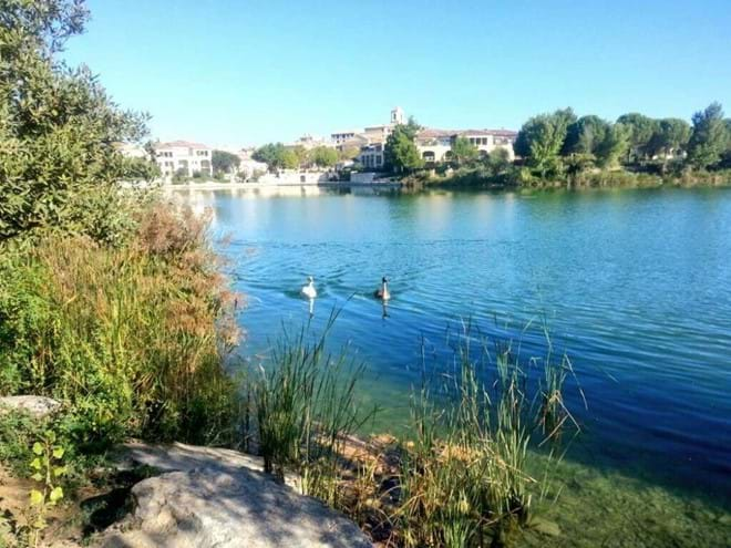 Pont Royal lake.