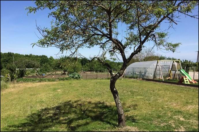 Loire Valley self catering gite garden.