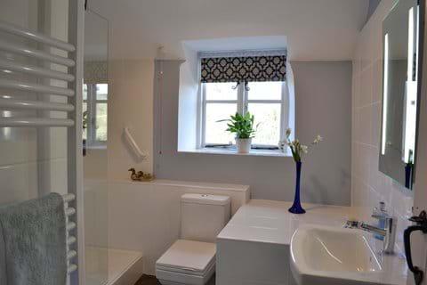 Mill Cottage walk-in shower room