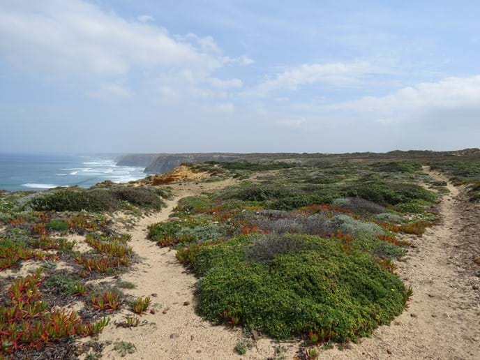 Stunning walks along the local coastline