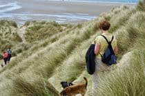 Ynyslas sand dunes, Borth