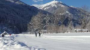 Cross Country Skiing January 2021
