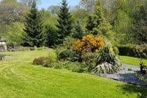 The garden in springtime.