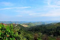 Walking in the Langhe hills