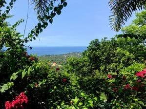 Uitzicht vanuit het tuinhuisje (ook wel