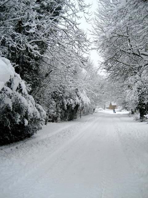 From outside our gate, Back Street in winter