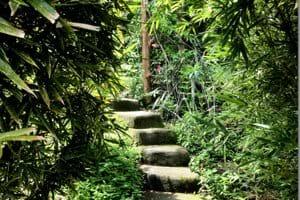 In de tuin zijn tal van trappen die de niveaus verbinden