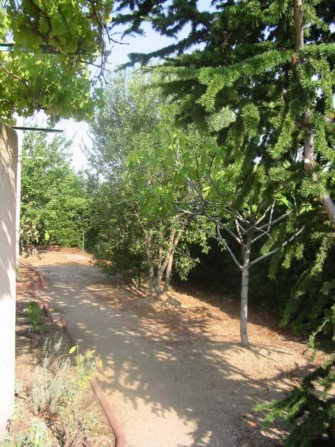 Side Villa Garden