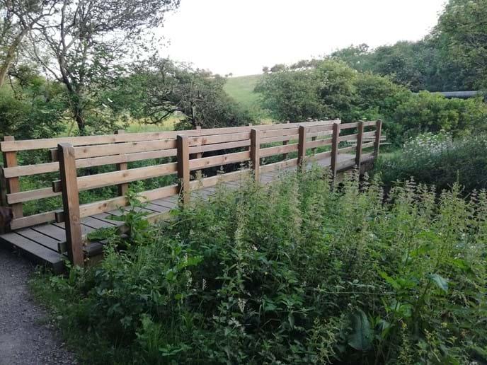 Holywell Dene - Seaton Sluice