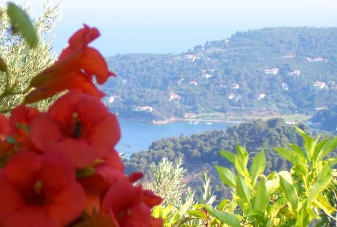 Orchard Villa to Kanapitsa beach and taverna