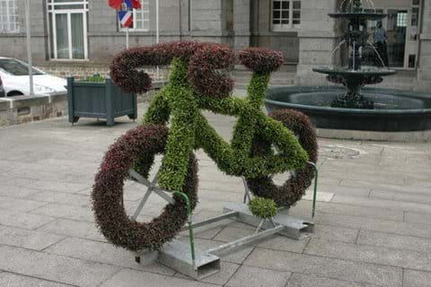Floral Cycling