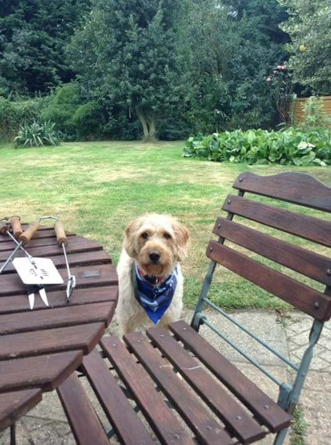 Boris loved the garden and barbecues!