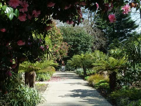 Milntown Gardens near Ramsey.
