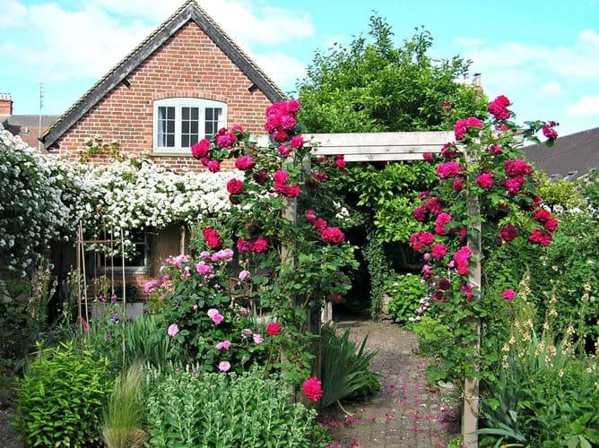 Your bedroom window, overlooking the garden [in June]