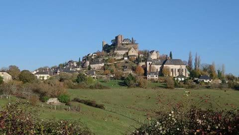 Villebois Lavette castle