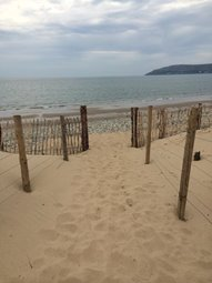 Conwy Morfa - our local dog friendly beach
